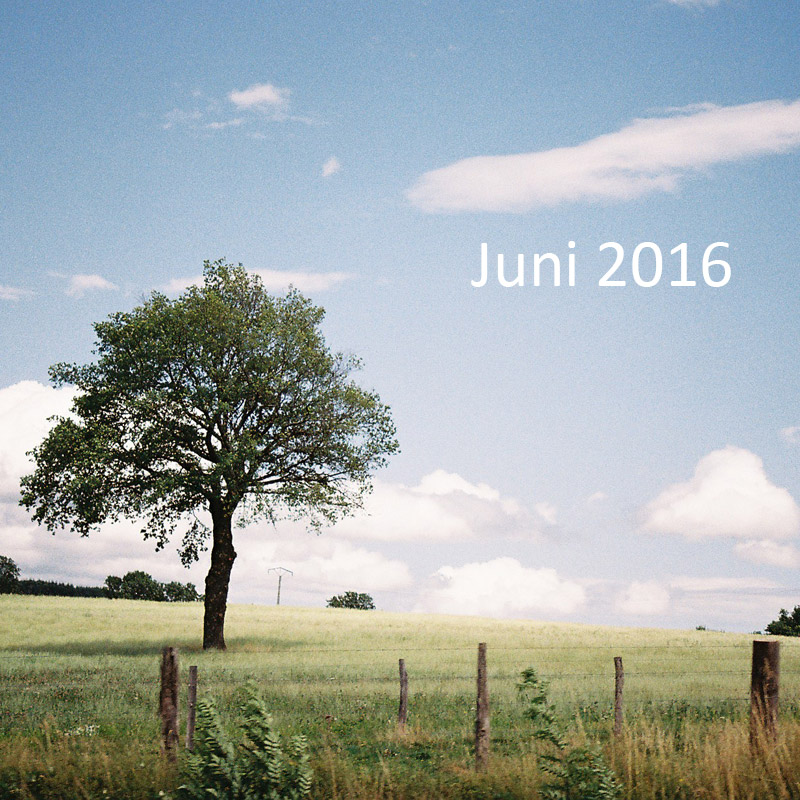 auswertung-juni-2016